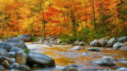 yellow-river-nature-wallpaper