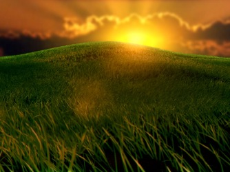 uR7fMojkQsyUn5BXjuSf_sunset_grass
