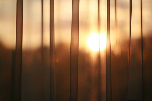 sun-through-curtains-window